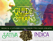 Guide To Cannabis Strains