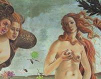 "DirectTV ,""Venus"""