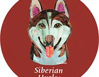 027 | Siberian Husky (Red)