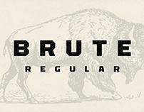 Font | Brute