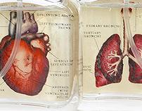Van Der Lichaam Aromatherapy Packaging