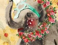 Species in extinction posters