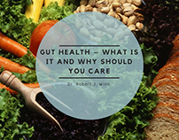 Robert J Winn | What is Gut Health?