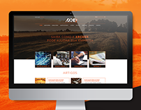 Website: Archer Consulting