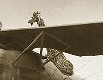 World War G.