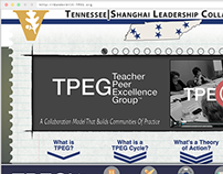 Teacher Peer Excellence Group (TPEG)