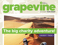 The Vine / Grapevine Staff Magazine concepts