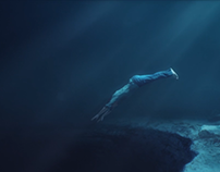 TVC The Diver