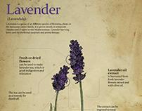 Plant Infographics