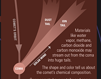 Infographic: Anatomy of a Comet