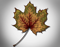 Autumn: Vectorizing Nature