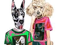 DOG TOWN | Colcci