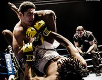 100% Fight 24