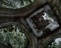 Nature and ruins