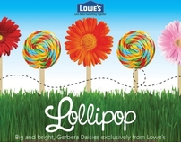Lollipop Daisy Plant Stake for Lowes