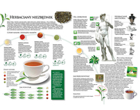 GUIDE TO TEA infographics