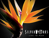 Silverworks LIVE TO PLAY Campaign