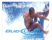 BUD LIGHT SURFING