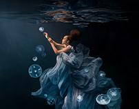 "Chicago Shedd Aquarium ""Underwater Beauty"""
