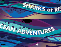 Styleframes |  Sharks at Risk