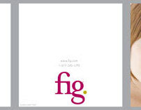 fig. :: Product Sheets & Brochures