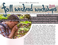 Single-page flyer for weekend workshops