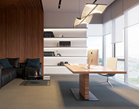 Executive office concept