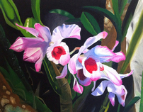 Orquideas - Oil paint