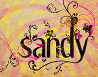 Poster // Sandy's typo