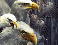 Eagle tribute art