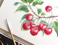 Olive, Cherry, Strawberry