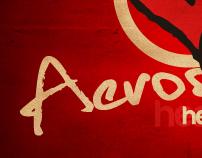 AEROSMITH DISC COVER