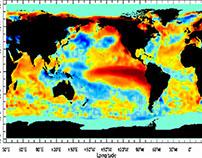 The 1997 El Niño