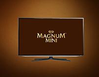 Magnum Haz Arası