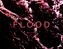 FLOOD - video loop / 2013
