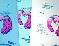 Recent Riso Prints