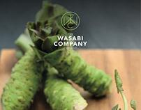 Wasabi catalog