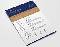 Free Flat Resume Template