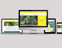 ECOMICRO – Webdesign