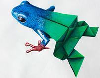 Metamorphosis Illustration // Ilustración técnica mixta