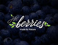 JSC Berries