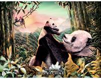 Disney Nature - Born In China