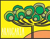 [Ilustração] Araucaria angustifolia