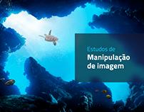 Manipulações de Imagem - 2020