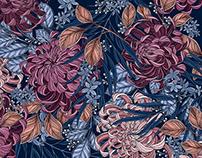 Pattern Illustration: Chrysanthemum Garden