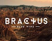 Bractus - Vino • Branding
