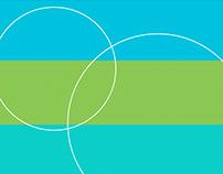 Vista Color Website Re-design