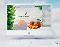 APEPA - Re Diseño de Web - Frutos Orgánicos