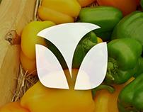 Logotipo VitaReal