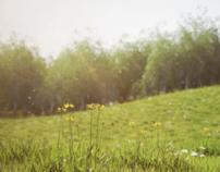 3d grass and light study